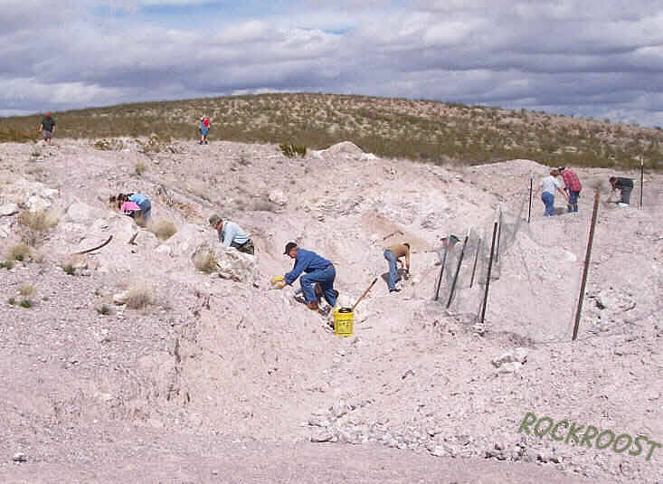 Prospector's Corner - Trip to Deming, New Mexico  Prospecting for